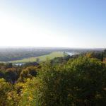 Herbstblick auf Dresdner Elbufer