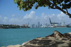 Blick auf den Hafen und die Skyline von Miami