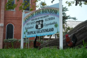 End of the Rainbow Schild Key West