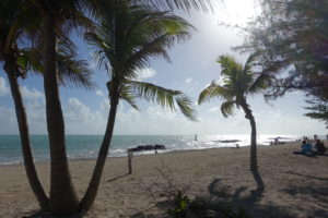 Strand Fort Zachary Taylor Key West