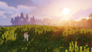 MeinCroft Screenshot mit Katze